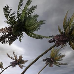 In the aftermath of a hurricane it can be difficult to do business.