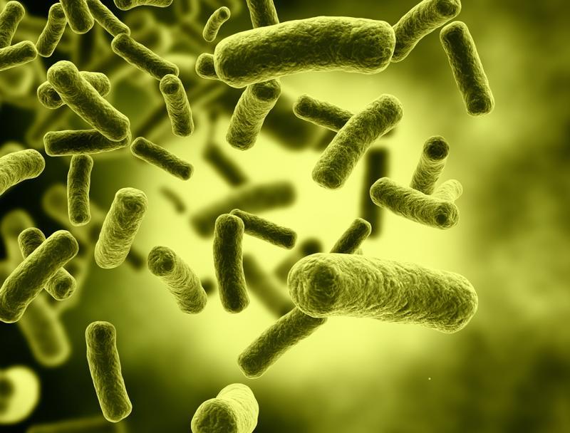 In biological treatment methods, natural bacteria breaks down organic impurities in water.