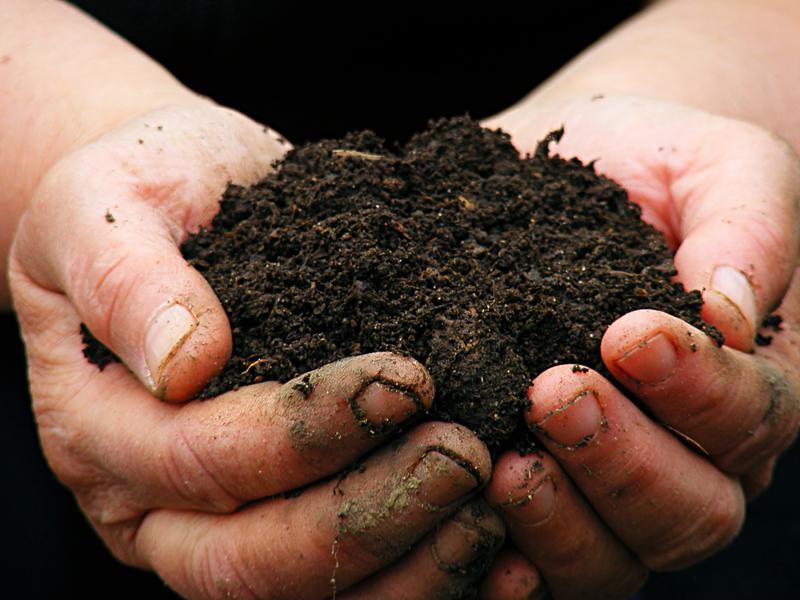 Tips for building the best soil