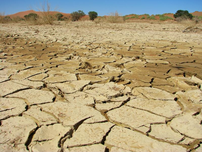 Drought management, Part II: Preparing for the next drought