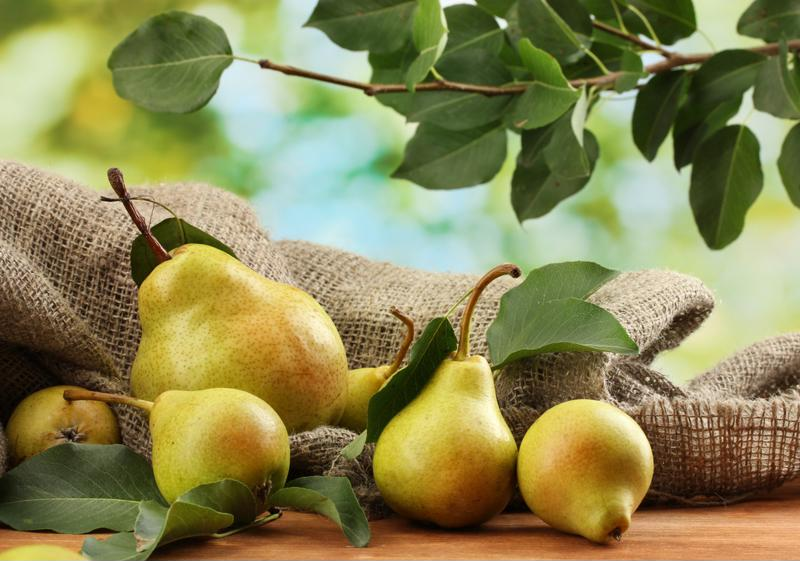 The subtleties of growing pears
