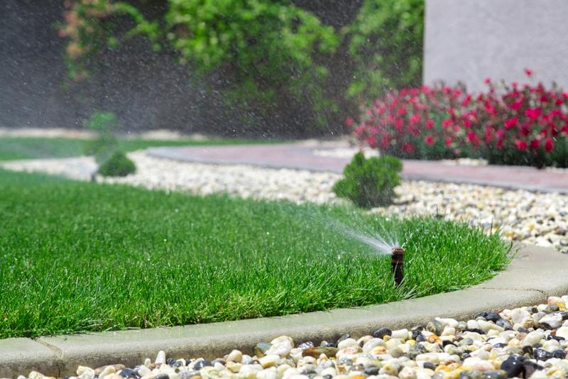 Some homeowners replace their lawns with landscaping features or paved walkways.
