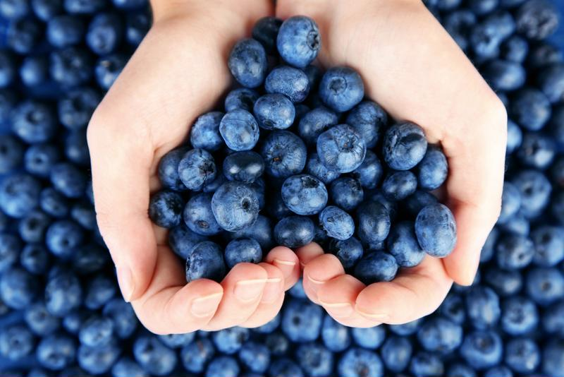 The sweet joy of homegrown blueberries