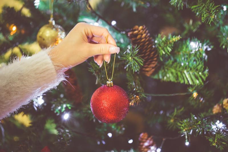 Carefully choosing a Christmas tree