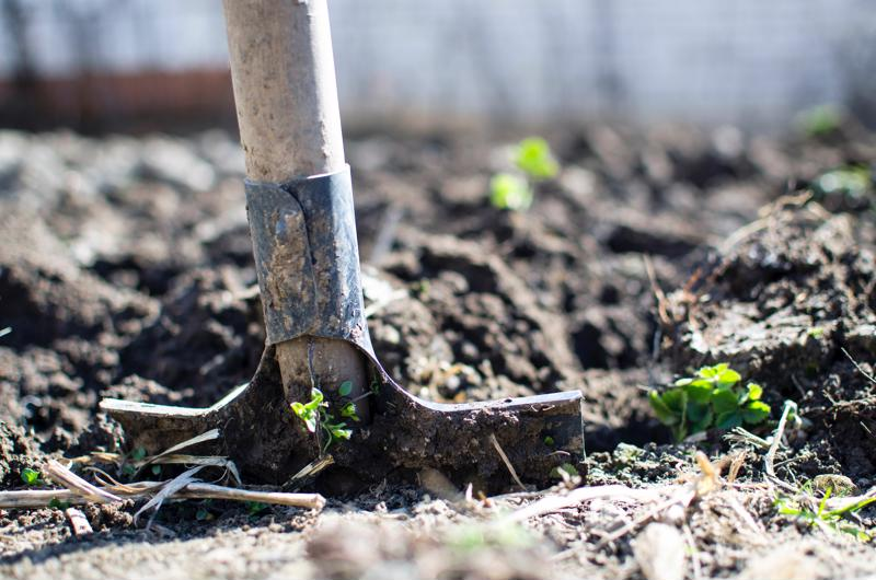 Understanding the role of limestone in soil acidity management